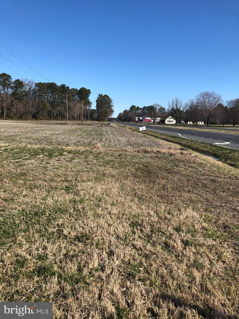 135.44 ACRES W DUPONT RD   - Lewes Realty Real Estate